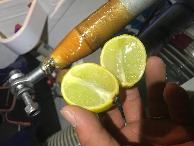 レモンかじって気分転換